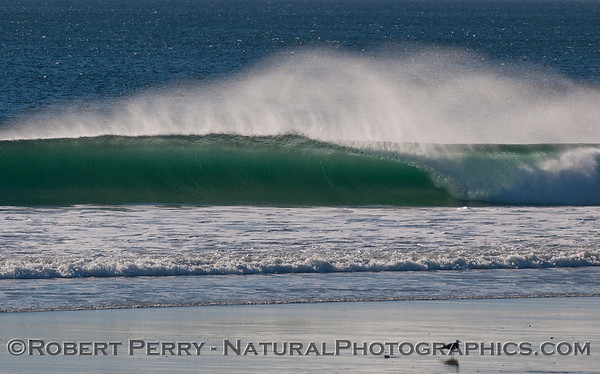 2011 01-20 Offshore Perfection
