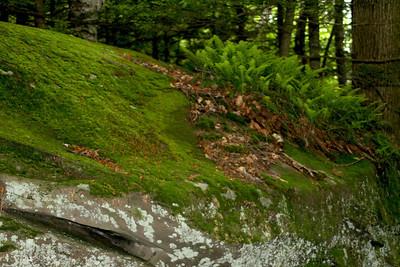 Catskill Escarpment Loop from Schutt Road (North/South Lakes)