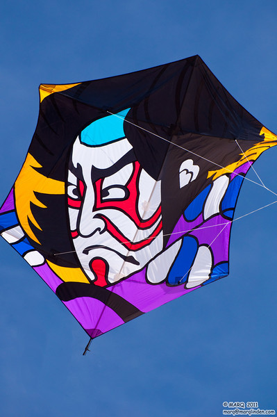 HB Kite Party 2011 #7