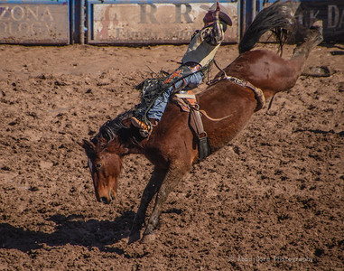 2019 Tucson Rodeo
