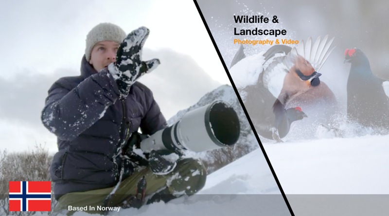 Wildlife & Nature photographer B-roll footage, stockphoto/video & locations. contact TEAM MAPITO for more details and usage rights. https://www.teammapito.com