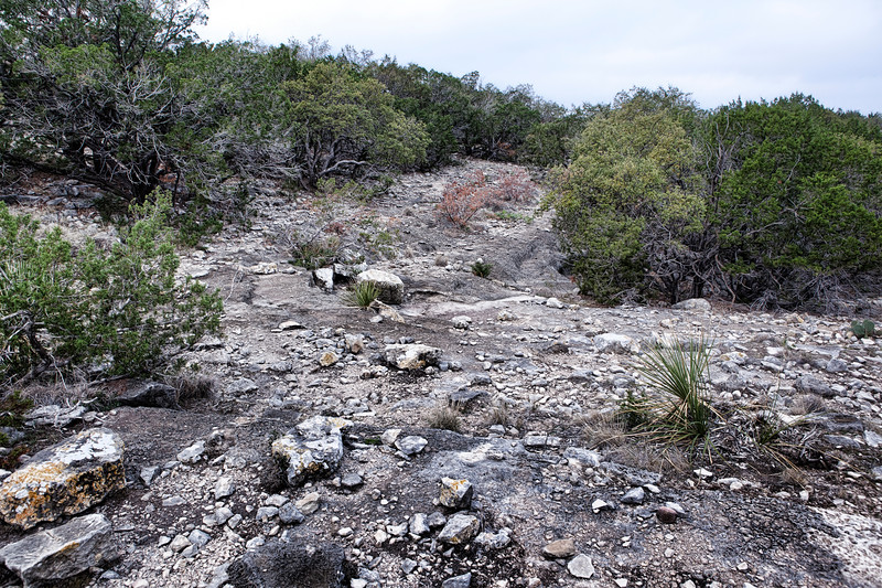 2011-11-19 Ozona landscape 6491.jpg