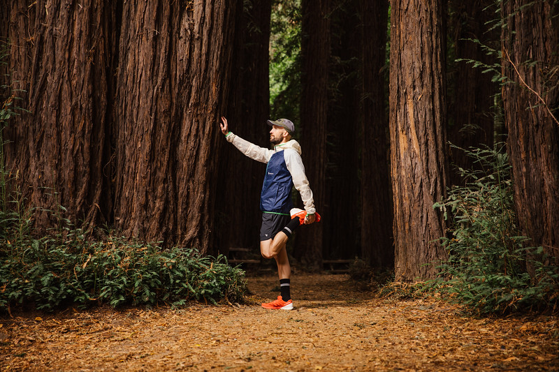 DT_redwoods_Jussioksanen_edited-2086.jpg