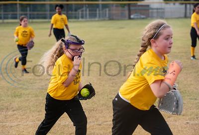 Rose Capital West Little League & Greater Tyler Softball Association Games by Sarah A. Miller