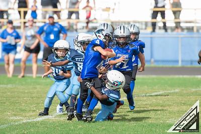 9/1/19 Tiny Mites Football Panthers vs Titans