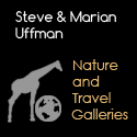 Steve and Marian Uffmans Nature and Travel Photography