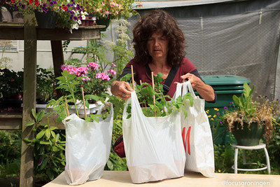 Tuin in de stad-2013 plantenruilmarkt