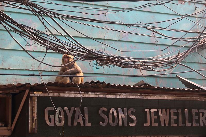 Sights in  Old Delhi