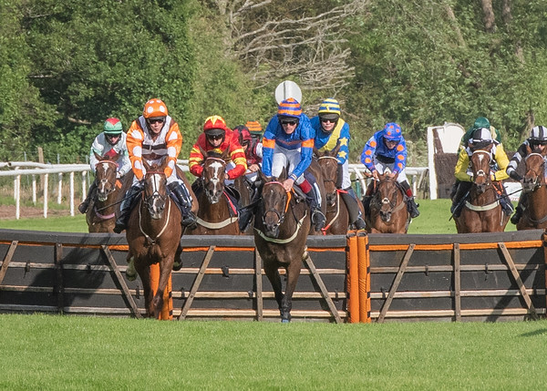 Race 2 - Dorette