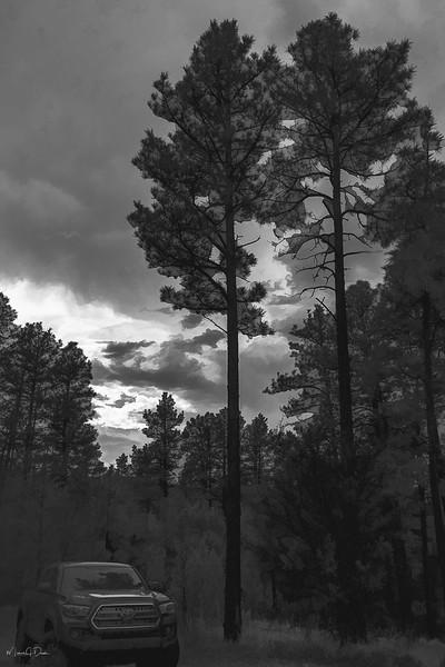 Camping-3V2.jpg