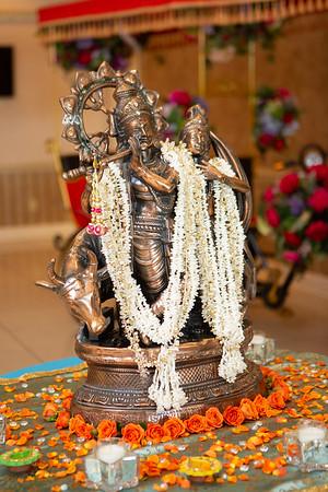 Niyati and Abhi's Sangeet