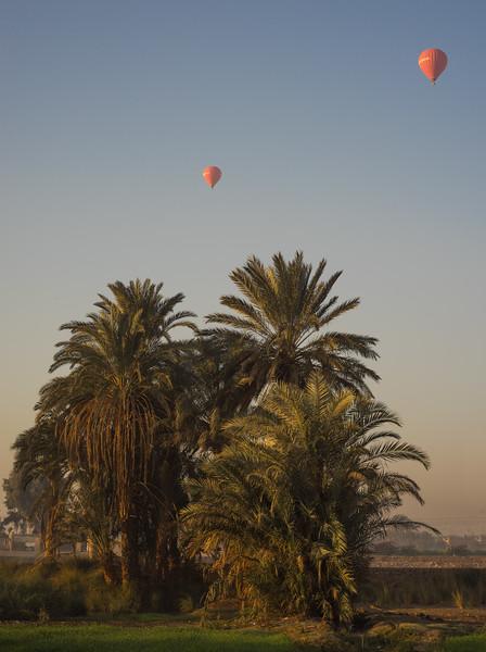 Campos frente al hotel Marsam. Luxor