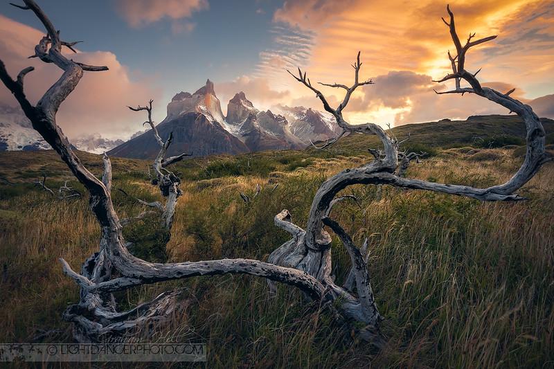 Patagonia - Torres Del Paine 1.jpg