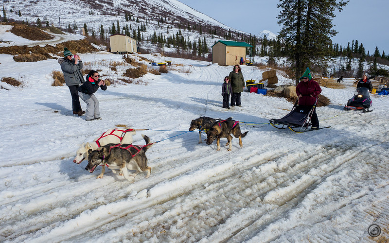 20190325_Blaire_and_Liz_Mushing_78.jpg