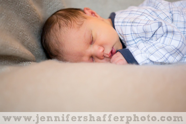 Franco Newborn Session Highlights