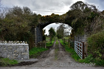 The Roscrea, Birr & Portumna Railway