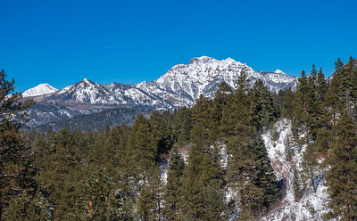 Turkey Creek XC Ski