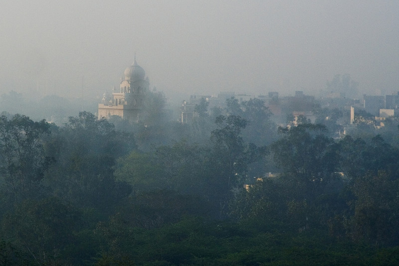 Delhi Mosque across the Park.jpg