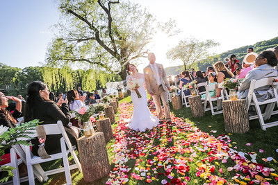 V+M Wedding