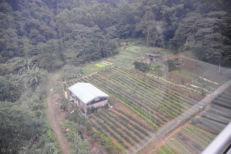 20110123_TaipeiDay2_0053.JPG