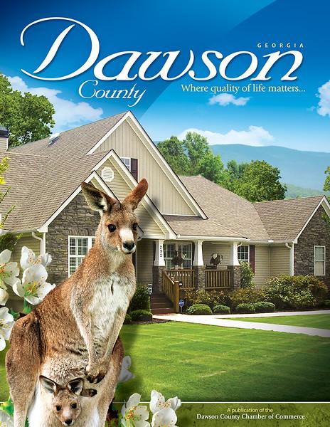 Dawson County NCG 2010 Cover (2).jpg