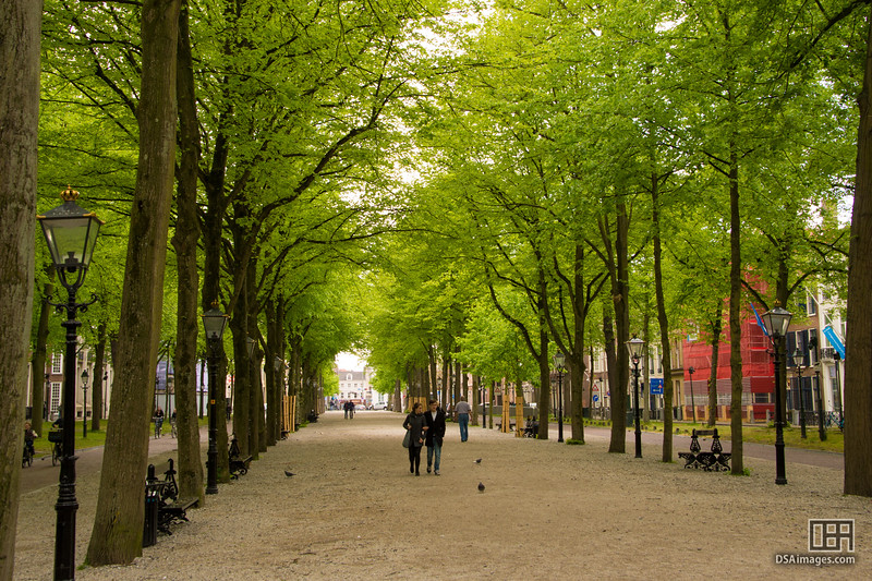 Central park in The Hague