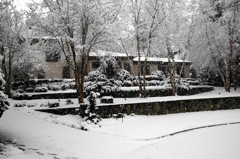 snow_o1_2018_009.jpg