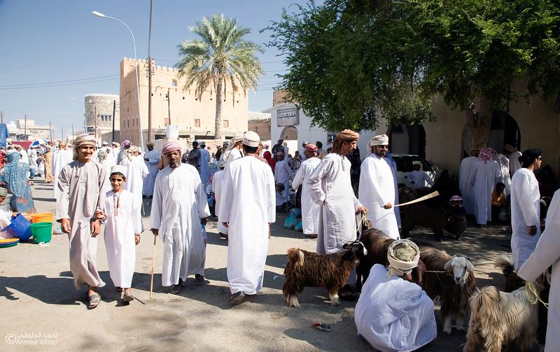 Traditional market (46)- Oman.jpg