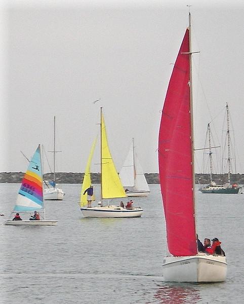 SailingClassOTW2.jpg