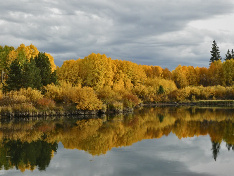 autumn08-031_39474848605_o.jpg