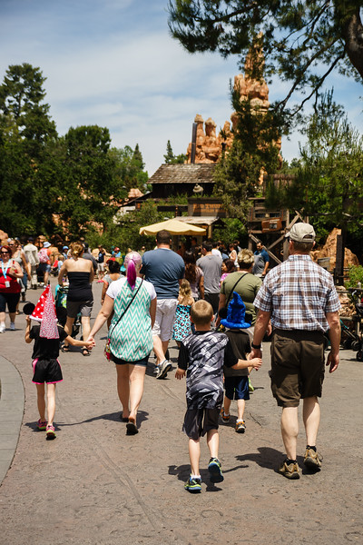 Disneyland-20150430-1332.jpg