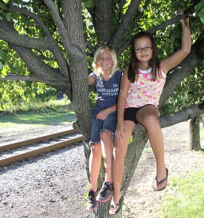 Girls in Tree, North Railroad St, Tamaqua (8-29-2012)