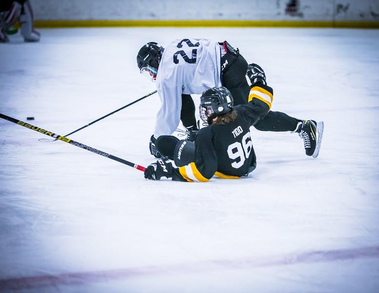Bruins2-178.jpg