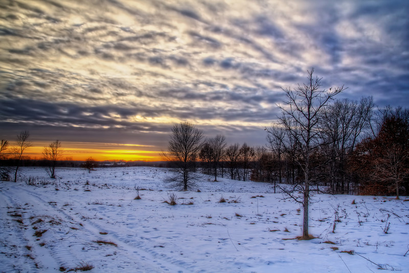 20130122OakLE 017_18_19_20_21_22_tonemapped.jpg