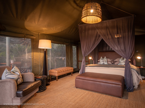 Hillsnek Safari Camp - Amakhala Game Reserve