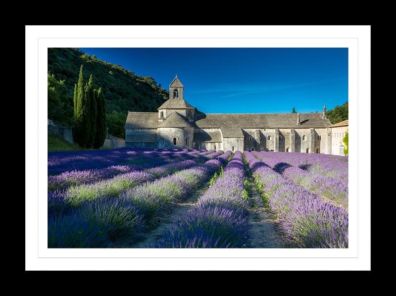 Abbaye senanque, Provence.