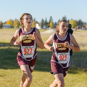 West Side District Cross Country 2014