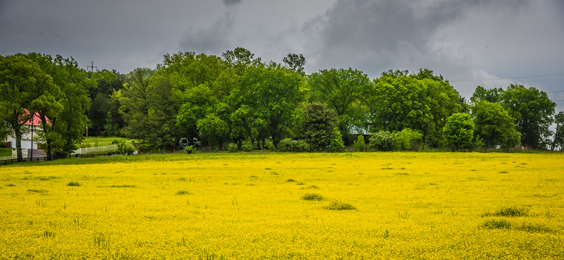 Surrounding Countryside Nashville TN