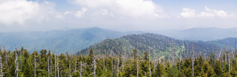 Smokey Mountain Vacation