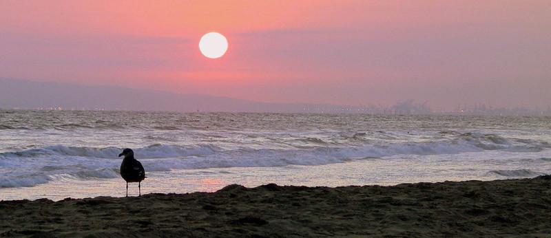 Huntington Beach Sunset (3).jpg