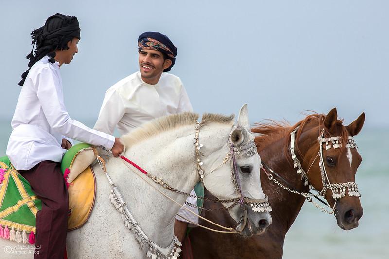 IMGL5325- Horse show.jpg