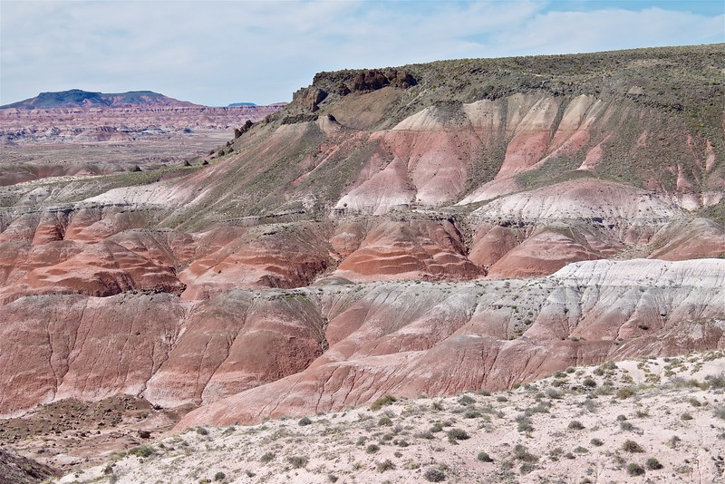 Painted Desert Petrified Forest National Park