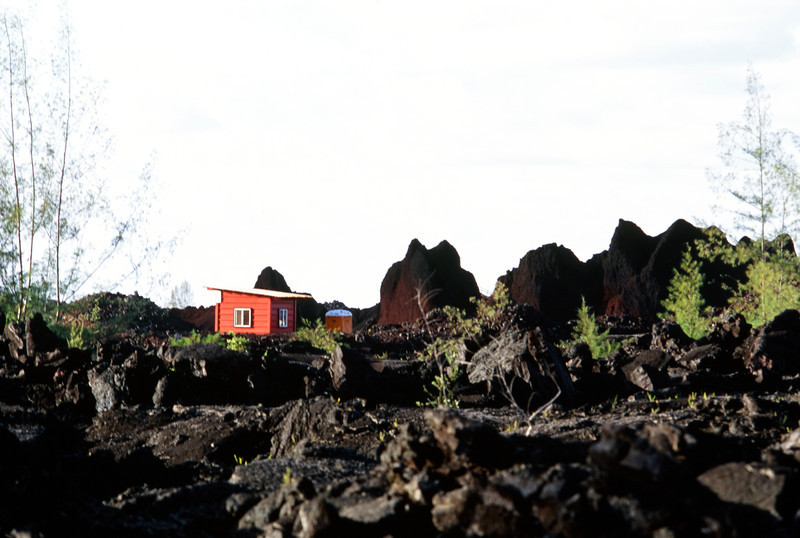 The Remains in a Lava Field