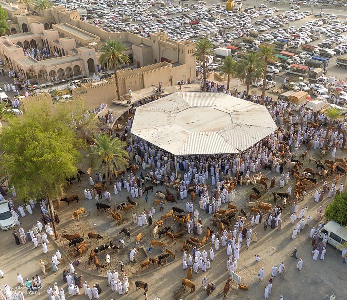 DJI_0030 copy- Oman.jpg