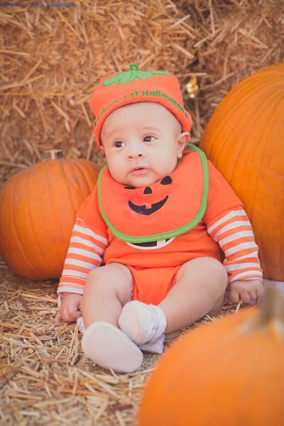 pumpkinpatrick-0005.jpg