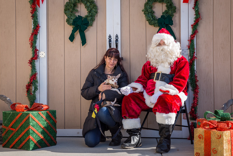 Pet Pictures With Santa-60.jpg