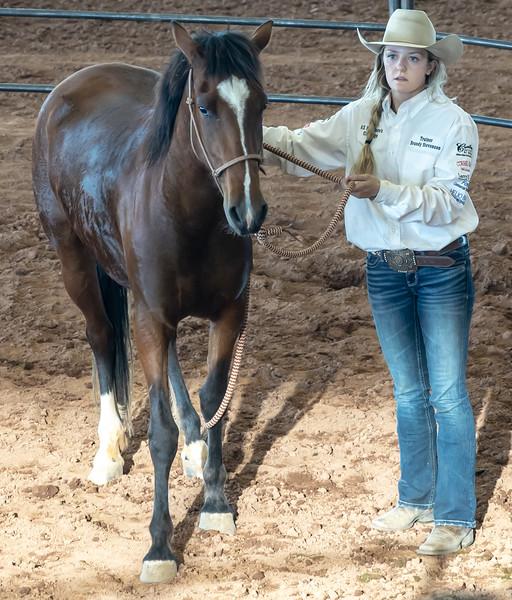 Arizona Horsemans Challenge and Expo  April 20, 2019  08_.jpg