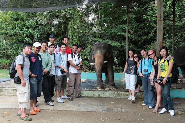 Photokaki Kuala Gandah Elephant Sanctuary Trip