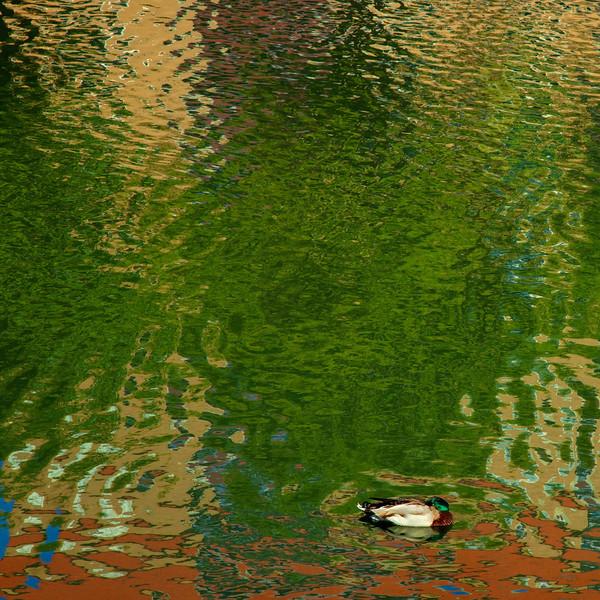 Dag_021_2012-maj-02_5403.jpg