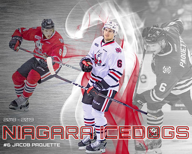 Niagara ICEDOGS Action Collage